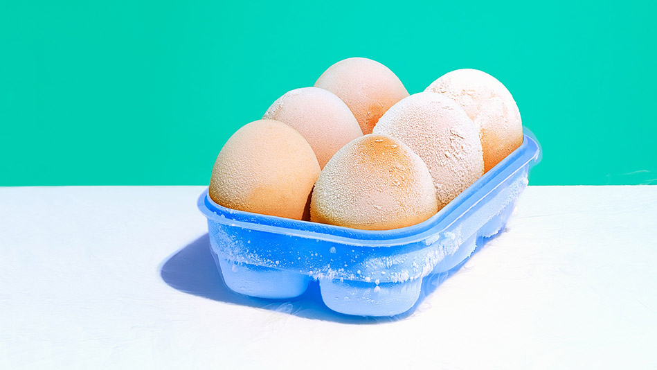 The Truth About Freezing Your Eggs