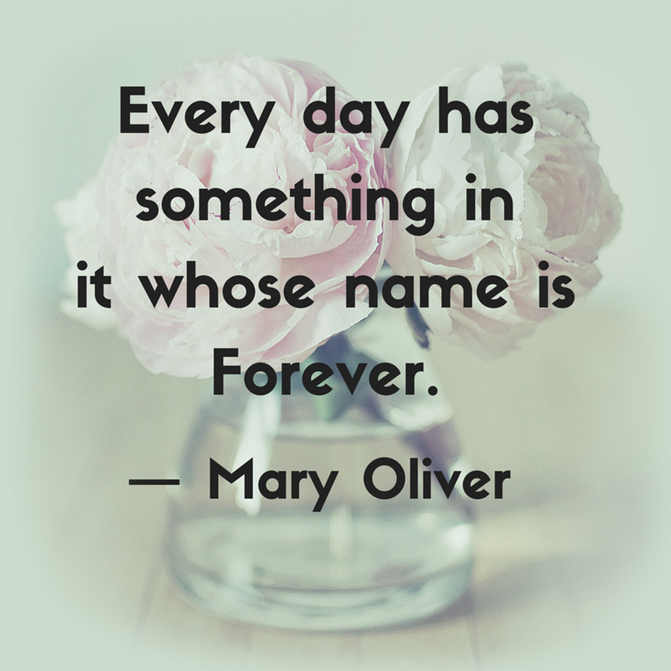 happiness and mary oliver Discover mary oliver quotes about giving share with friends create amazing picture quotes from mary oliver quotations.