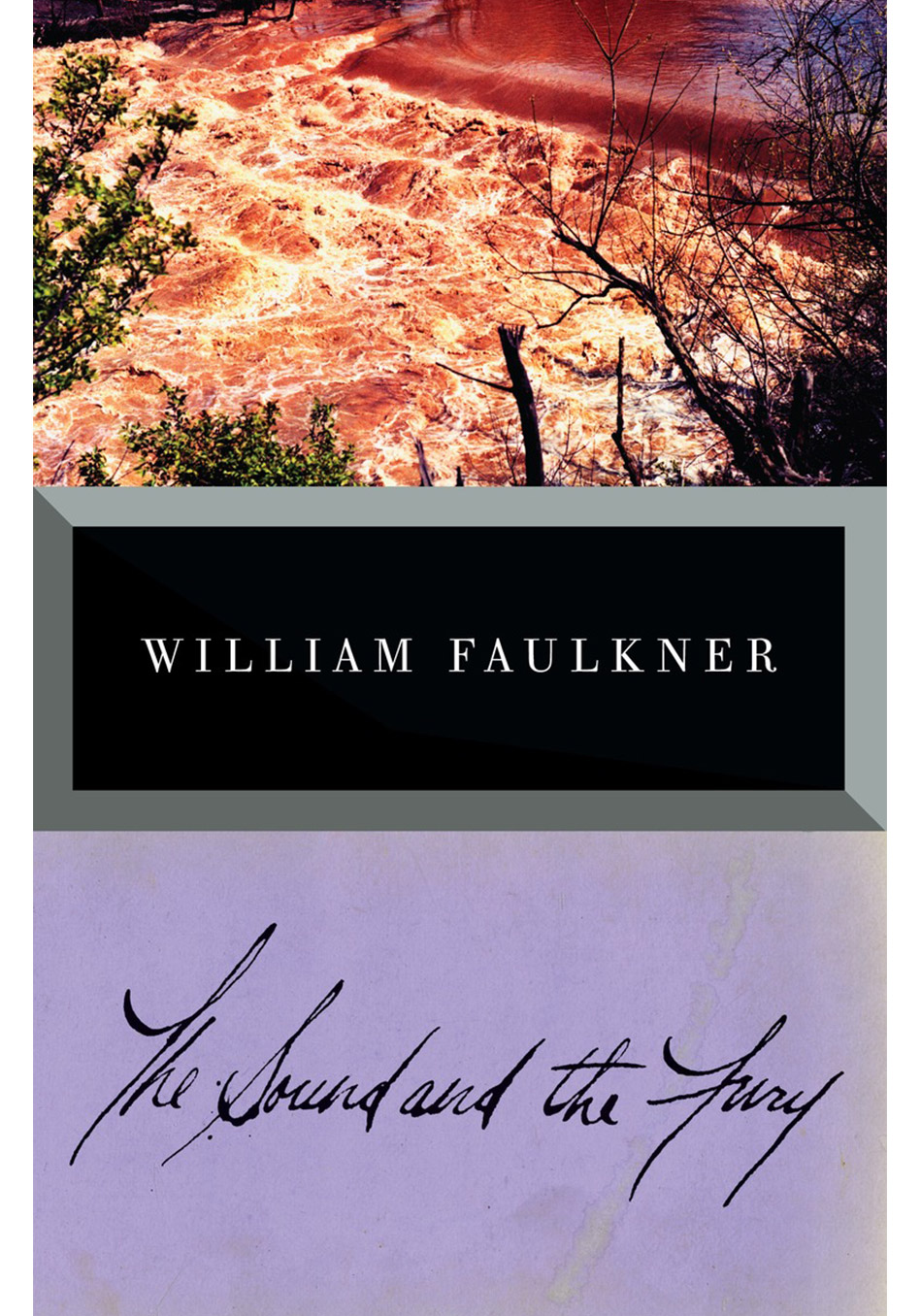"a familys pride in the sound and the fury by william faulkner The sound and the fury, the first major novel by william faulkner, published in 1929 life ""is a tale told by an idiot, full of sound and fury, signifying nothing."