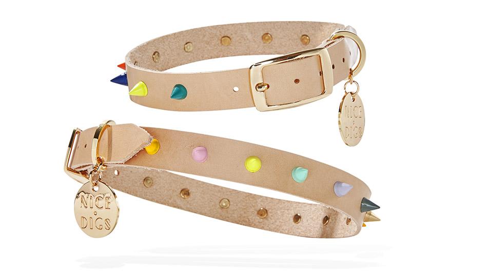 nice digs spiked dog collars