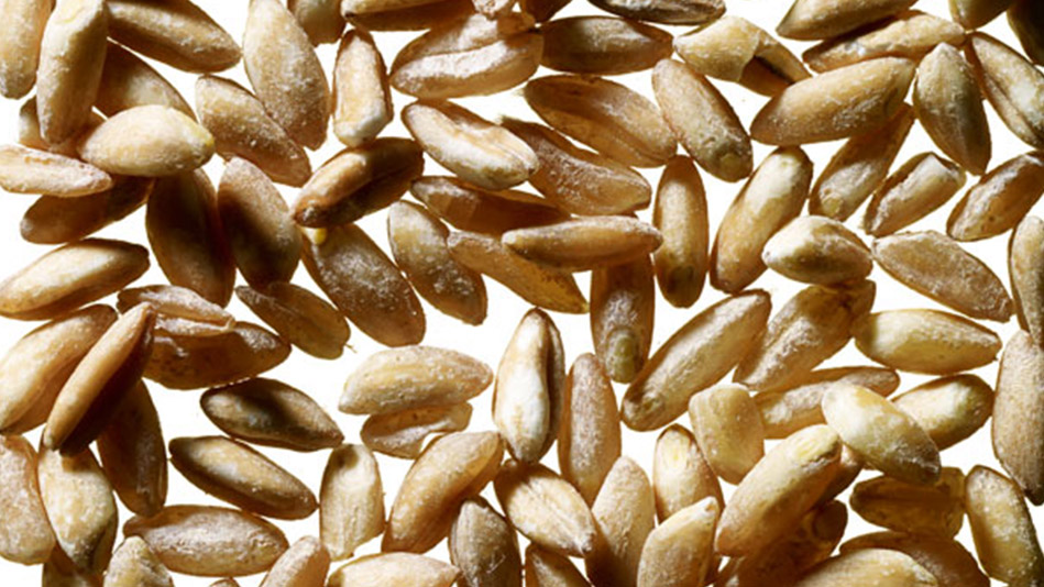 4 Exotic Grains That Can Improve Your Health