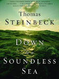 'Down to a Soundless Sea' by Thom Steinbeck