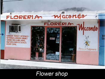 Journey Colombia Macondo Flower Shop