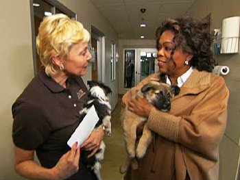 Oprah visits PAWS Chicago.