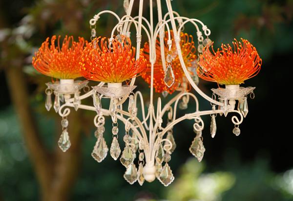 Flowers in chandeliers