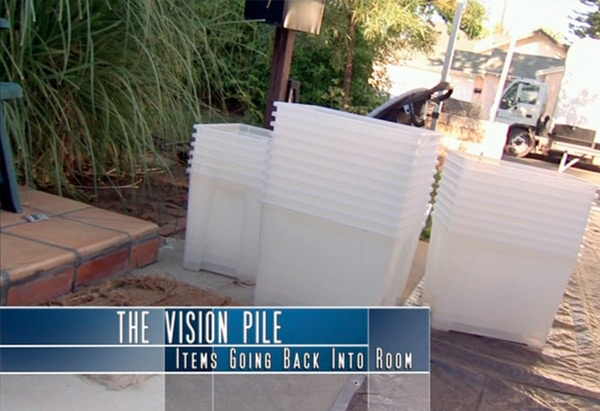 Decluttering Vision Pile