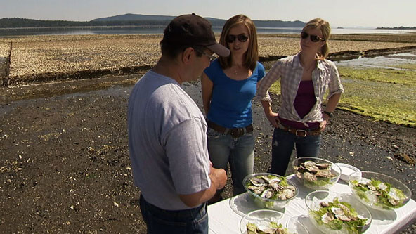 Oyster Taste Test