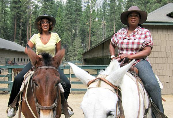 Mule riding