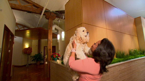 Inside Oprah's Finale: The Truth About Sadie - Video