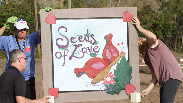 Planting Seeds of Love All Around Lovetown - Video