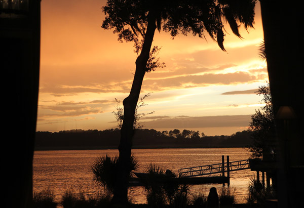 View of river, tree and dock at sunset