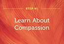 12 Steps to Compassion