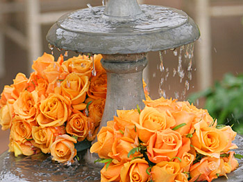 A beautiful fountain