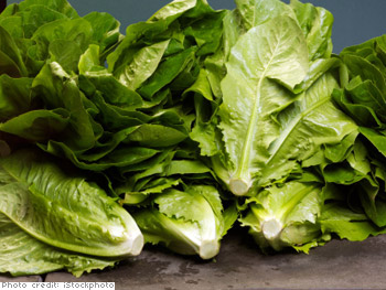 Romaine Hearts with 'Caesar' Dressing
