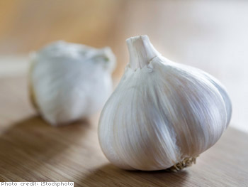 Garlic know-how