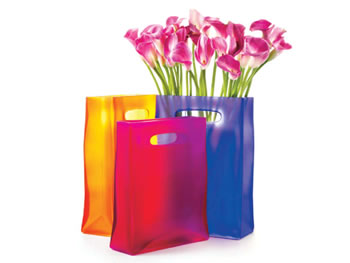 O at Home List: Glass tote bag vases