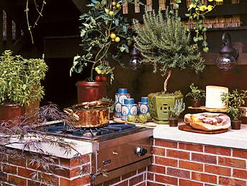 Art Smith's Viking wok/cooker