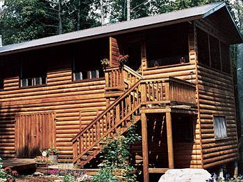 The log cabin was built with untreated lumber.