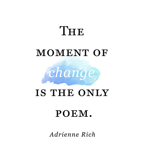 a plot overview of the book adrienne rich