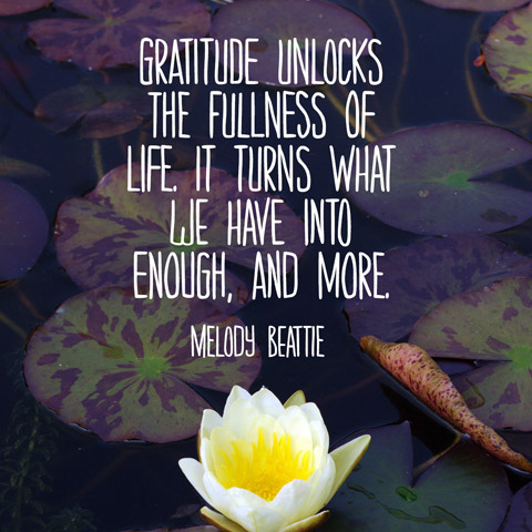 Quotes About Being Grateful Quote About Being Grateful   Gratitude Quote   Melody Beattie Quote Quotes About Being Grateful