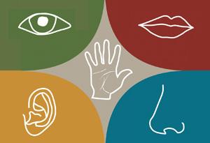 Your five clair senses