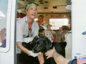 Matthew McConaughey on helicopter with dogs.