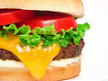 The Best Burgers in America!