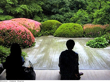 Jamie's photo of the Shisendo garden in Kyoto, Japan