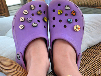 Jibbitz on a pair of purple Crocs
