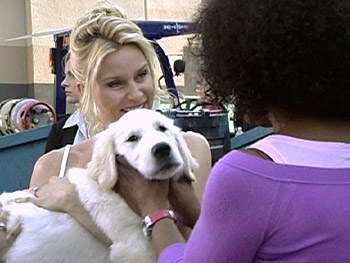 Nicollette Sheridan introduces Oprah to Oliver, a white golden retriever