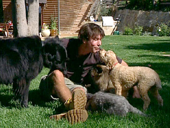 Jerry O'Connell loves coming home to his dogs.