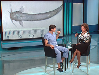 Dr. Oz says the 'penis fish' must be removed surgically.
