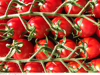 Can tomato paste prevent sunburn?