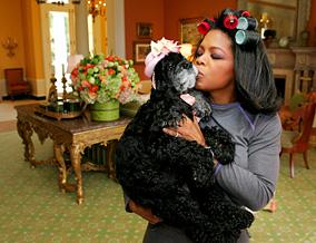 Sophie, Oprah's cocker spaniel