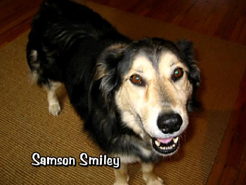 Samson Smiley