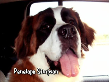Penelope Simpson