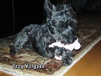 Izzy Votypka