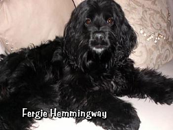 Fergie Hemmingway