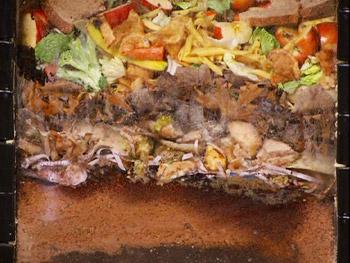 Sophie Uliano creates a 'garbage lasagna.'