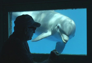 Ric O'Barry and a dolphin