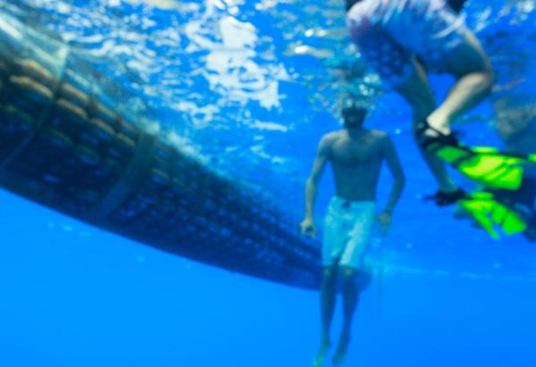 Underwater Plastiki View