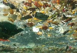 David de Rothschild on the Plastiki