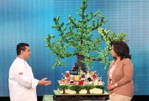 Buddy Valestro's cake for Oprah