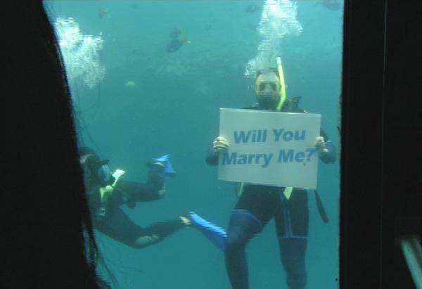Blake's underwater proposal