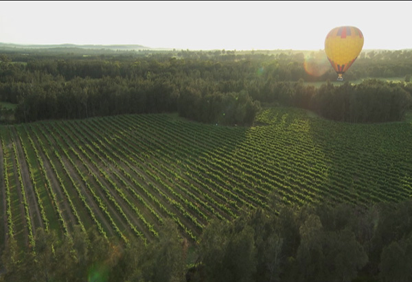 Hot air balloon over Hunter Valley