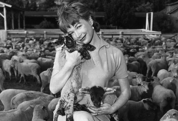 Shirley MacLaine in The Sheepman