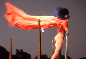 Diana Ross performing in Central Park, 1983