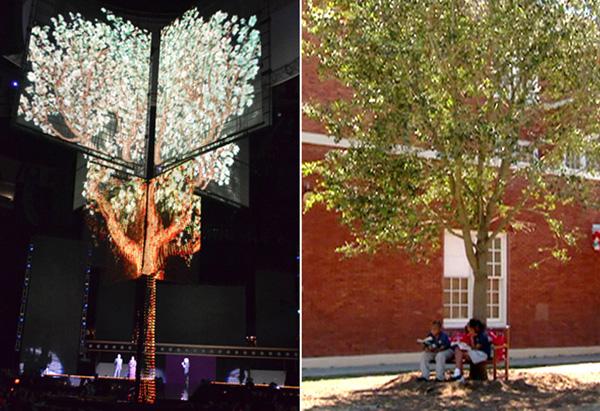 Audience LED Tree