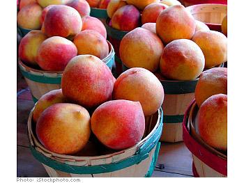 Georgia Peach Festival