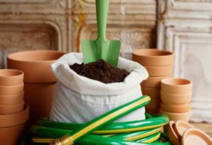 Use organic fertilizer in your edible garden.